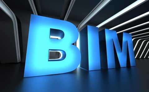 Costin Roe Consulting BIM